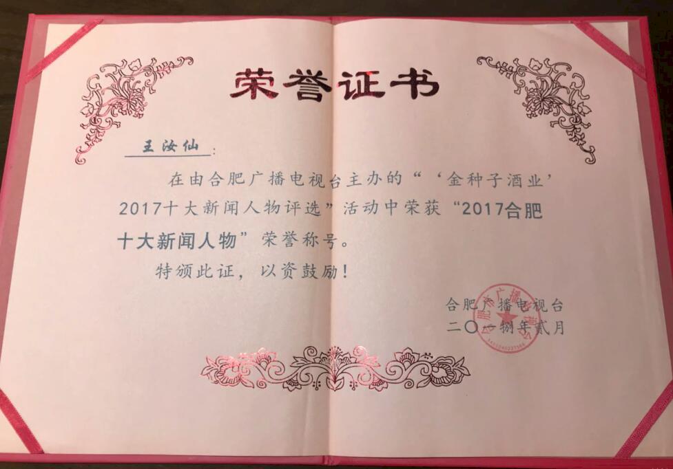 2017合肥十大新闻人物证书