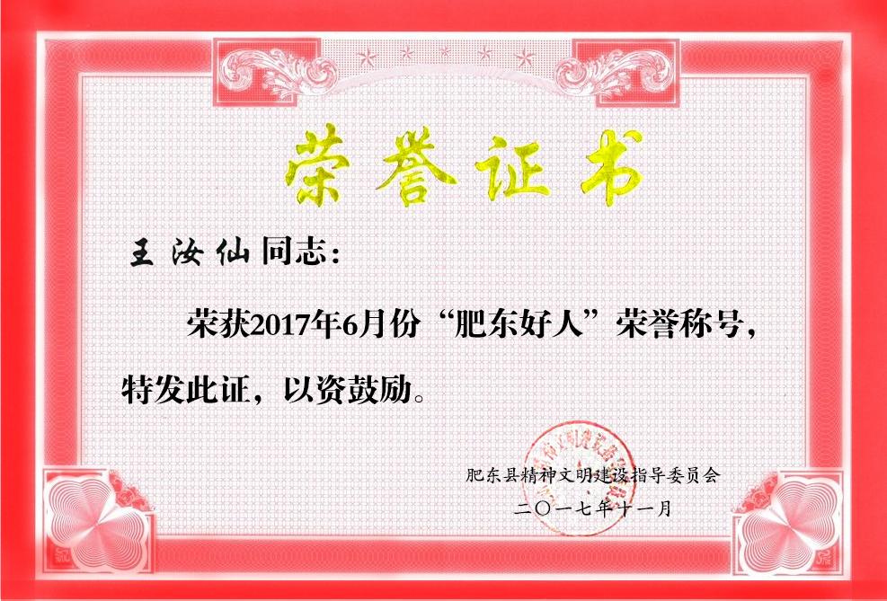 """董事长王汝仙荣获""""肥东好人""""荣誉称号"""